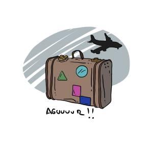 maleta3
